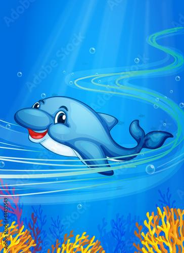 Wall Murals Submarine underwater dolphin