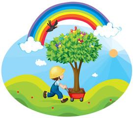 dječak koji nosi drvo u kolicima
