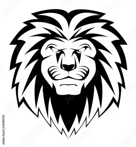 Fototapety, obrazy: lion face