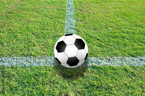 Fototapeta soccer field grass obraz na płótnie