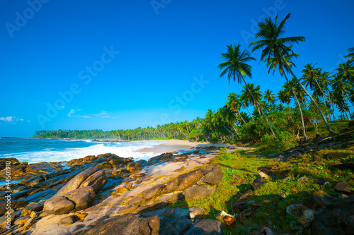Foto-Rollo - Tropical beach (von Anton Gvozdikov)