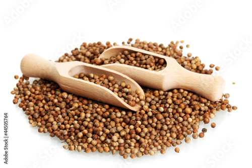 Foto op Canvas Kruiden 2 Heap coriander seeds in wooden spoon isolated on white