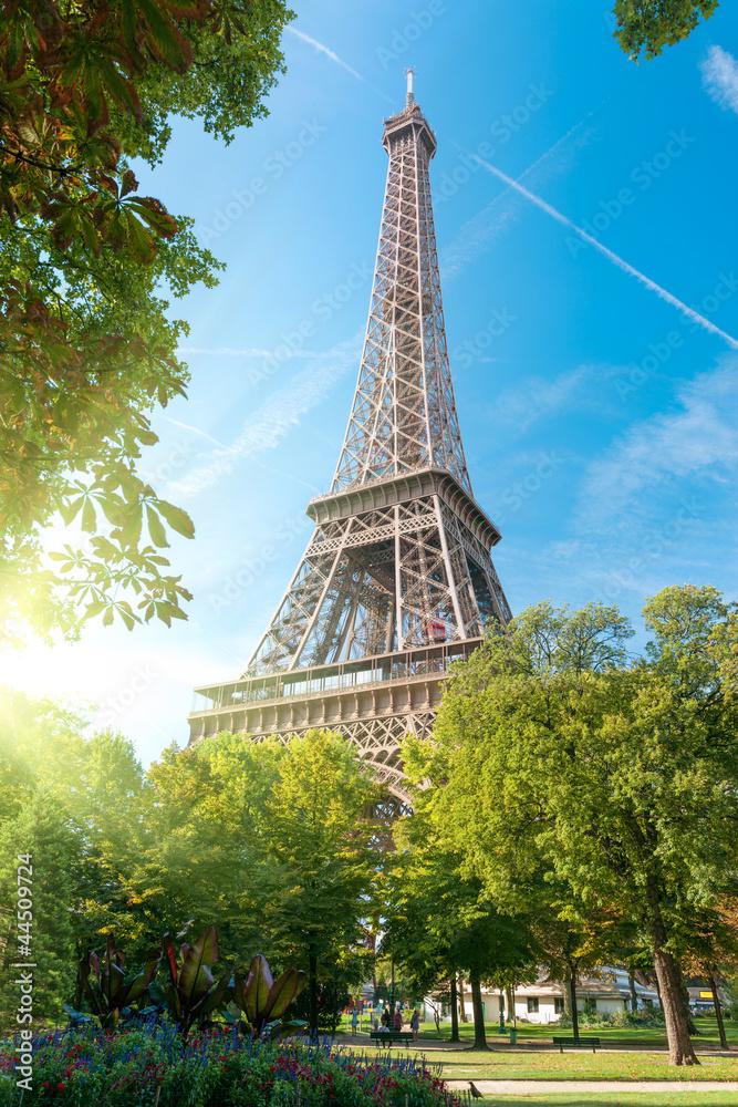 Fototapety, obrazy: Wieża Eiffla, Paryż, Francja