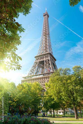 Obraz Wieża Eiffla, Paryż, Francja - fototapety do salonu