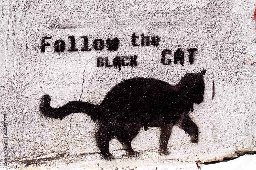 Fototapeta black cat graffiti