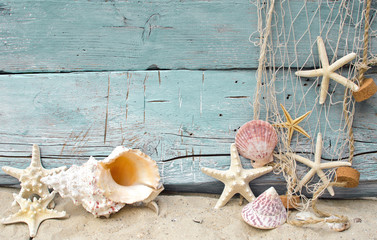 Maritime Urlaubserinnerung: Muscheln und Seesterne