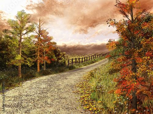 Foto auf Leinwand Straße im Wald Droga przez las w jesiennych barwach