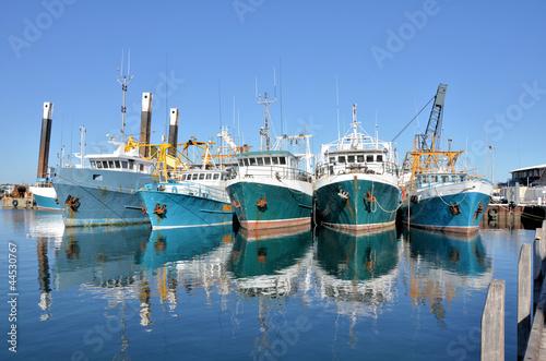 Fotografia, Obraz Fishing Boats in a Harbour