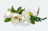 Fototapeta Kwiaty - biżuteria