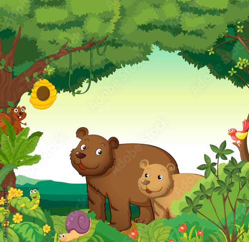 Tuinposter Beren Animals in the forest