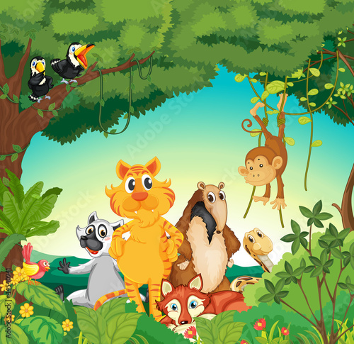 Stickers pour porte Forets enfants Animals in the forest