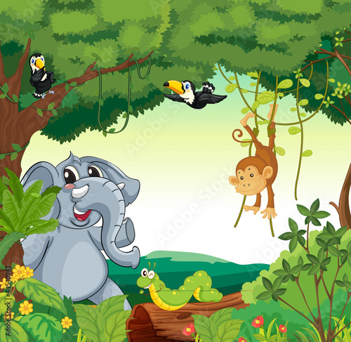 Tuinposter Bosdieren Animals in the forest