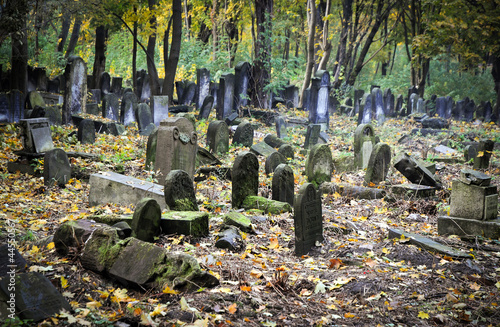 Montage in der Fensternische Friedhof Old graves at historic Jewish cemetery in Warsaw, Poland