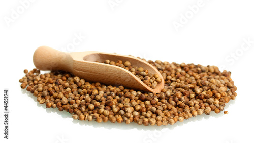 Photo Stands Herbs 2 Heap coriander seeds in wooden spoon isolated on white