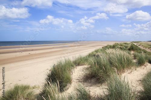 Poster Northern Europe sand dunes holkham beach north norfolk uk