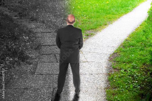 Valokuva  Decision making
