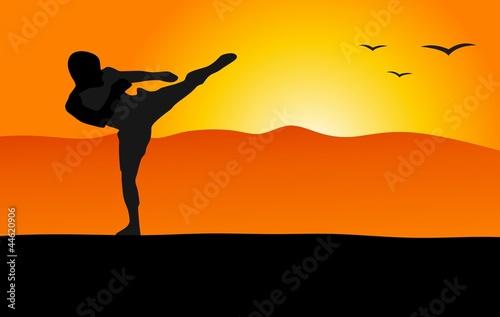 Photo  Martial arts master - silhouette