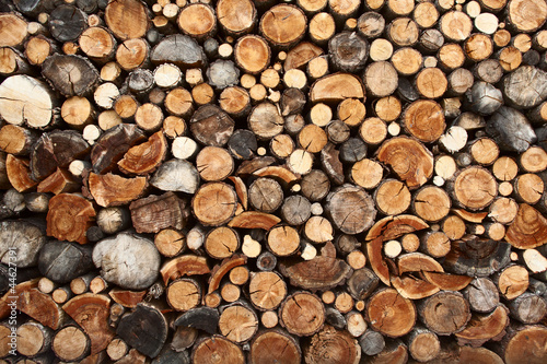 Tuinposter Brandhout textuur Pile of chopped fire wood