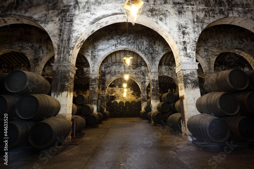 Ancient wine cellar with wooden wine barrels Canvas Print