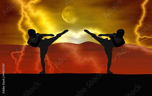 Deurstickers Vechtsport Silhouette illustration - Martial art