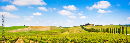 Deurstickers Toscane Tuscany landscape panorama with vineyard, Chianti region, Italy