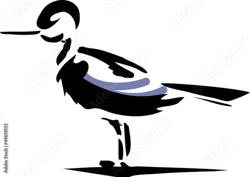 Fotografia, Obraz  Wading bird