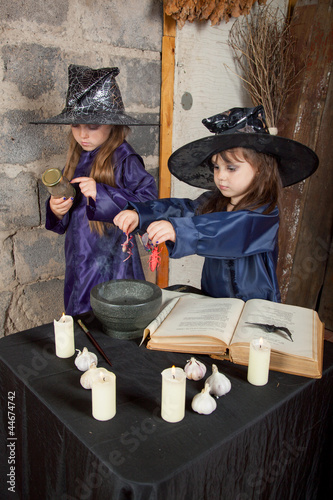 Plakát  Two little witches