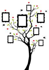 Naklejkafamily tree with frames, vector