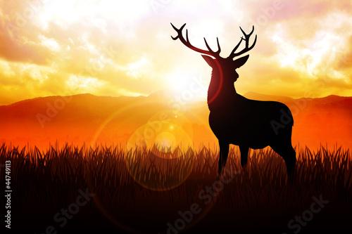 Zdjęcie XXL Sylwetki ilustracja rogacz na łące podczas wschodu słońca