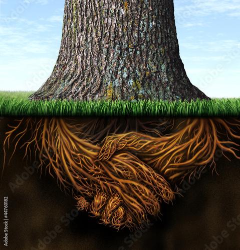 Strong Business Roots Wallpaper Mural