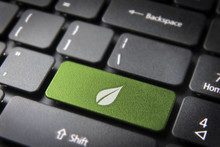 Green Leaf Keyboard Key, Envir...
