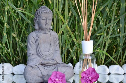 Doppelrollo mit Motiv - Buddha (von 500cx)