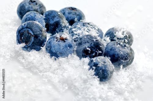 Blaubeeren Vaccinium myrtillus Fototapet