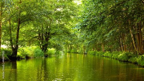 Spreewald Landschaft Tableau sur Toile