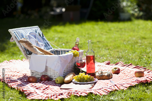 Staande foto Picknick Perfect food in the garden. picnic