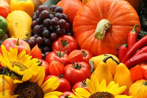 Veggies and flowers - 44898331