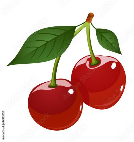 Fotografie, Obraz  Vector illustration of cherries