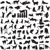 different set of silhouettes of cats