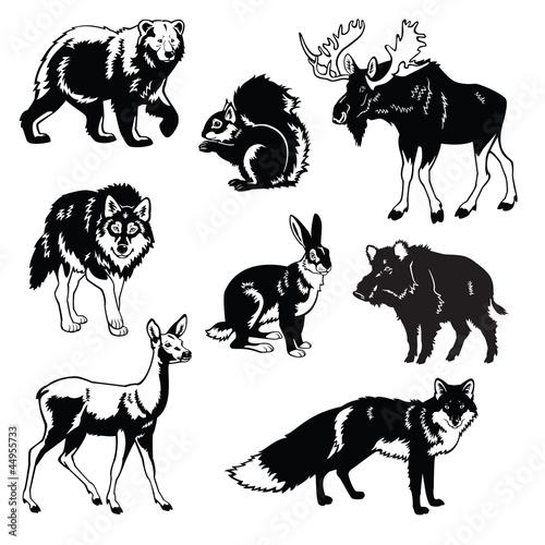 zestaw-zwierzat-lesnych-czarno-bialy