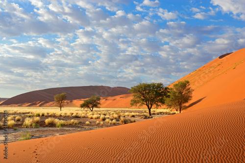 Spoed Fotobehang Oranje eclat Sossusvlei landscape