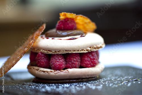 Fotografie, Obraz  Macaron, gâteau, pâtisserie, dessert, framboise, gourmet