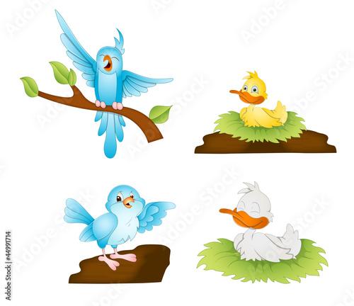 Poster Vogels, bijen Cartoon Birds Vectors