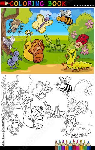 Türaufkleber Zum Malen Insects and bugs for Coloring Book or Page