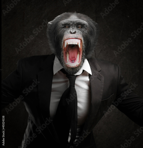 Spoed Foto op Canvas Aap Frustrated Monkey In Business Suit