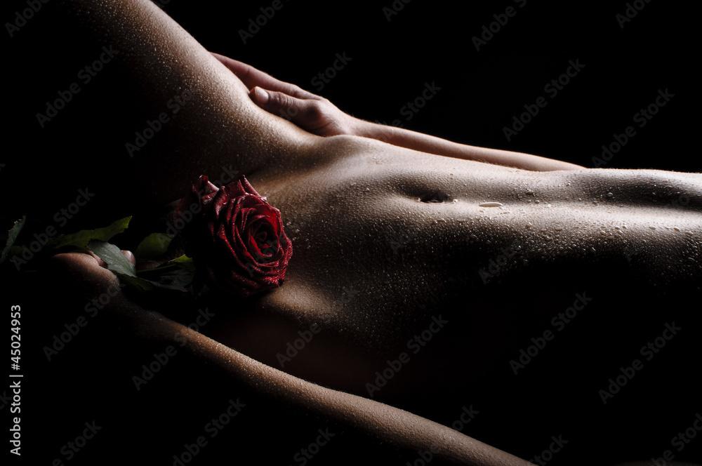 Fototapeta Nackter Bauch mit Rose