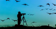 Bird Watcher Silhouette