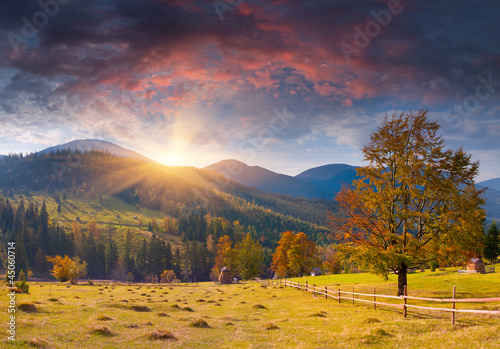 Fototapety, obrazy: Colorful autumn landscape in the mountains. Sunrise