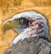 Aguila Con Bandera Americana Y...