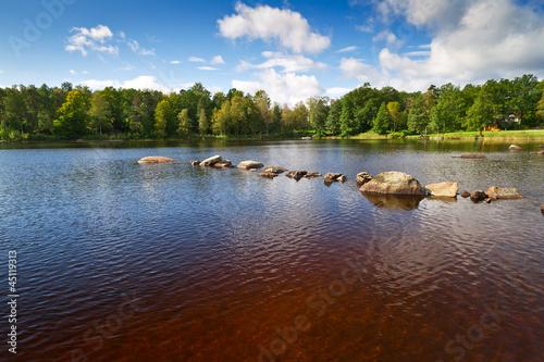 Garden Poster Brown Brown water lake in Kyrkhult, Sweden