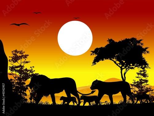Foto auf AluDibond Ziehen beauty lion family trip silhouettes with landscape background